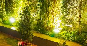 お庭の照明工事